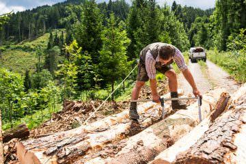 Holz Handel - Klade Group